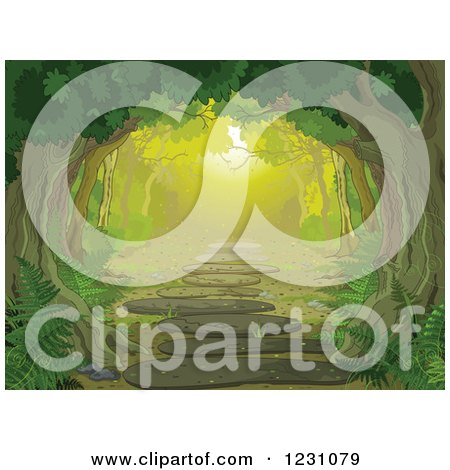 Clipart of a Tree Canopy over a Forest Path with Ferns - Royalty Free Vector Illustration by Pushkin