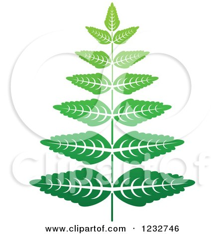 Clipart of a Green Fern Plant Logo - Royalty Free Vector Illustration by Vector Tradition SM