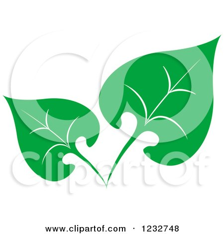 Clipart of a Green Leaf and Reflection Logo 37 - Royalty Free Vector Illustration by Vector Tradition SM
