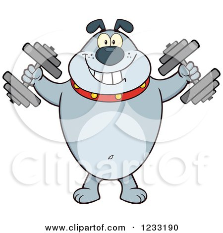 Clipart of a Gray Bulldog Working out with Dumbbells - Royalty Free Vector Illustration by Hit Toon