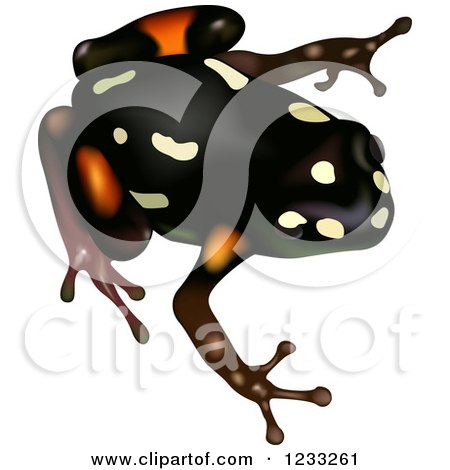Clipart of a Brazil Nut Poison Dart Frog - Royalty Free Vector Illustration by dero