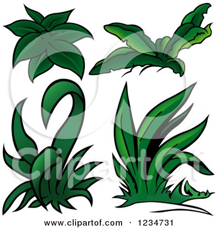 Clipart of Green Plants - Royalty Free Vector Illustration by dero
