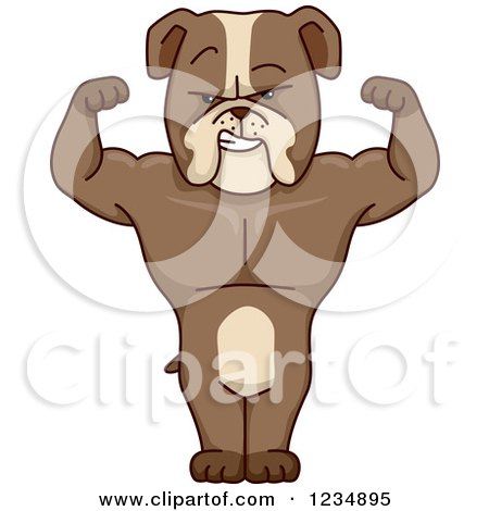 Clipart of a Strong Bulldog Flexing and Standing - Royalty Free Vector Illustration by BNP Design Studio