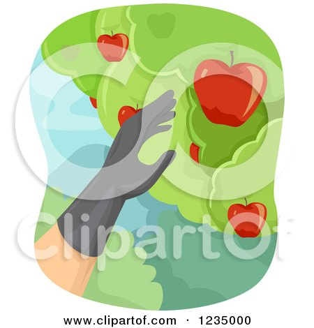 Clipart of a Gloved Hand Picking Apples from a Tree - Royalty Free Vector Illustration by BNP Design Studio