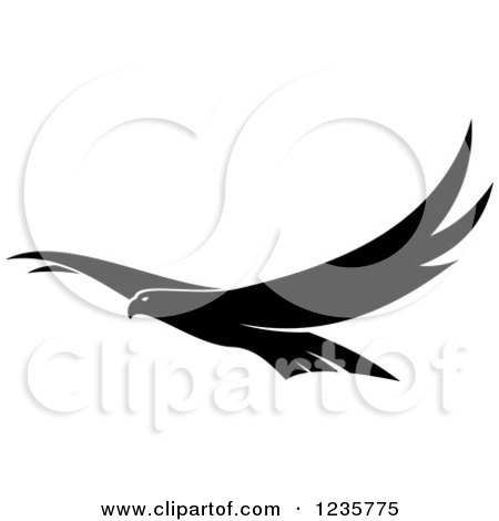 flying falcon clip art - 450×470