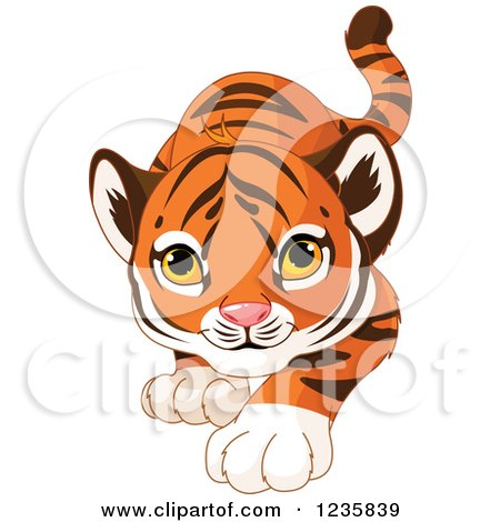 Clipart of a Cute Tiger Cub Stalking - Royalty Free Vector Illustration by Pushkin