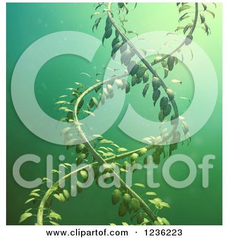Clipart of a 3d DNA Double Helix Vine over Green - Royalty Free CGI Illustration by Mopic
