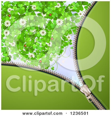 Clipart of a Zipper St Patricks Day Background of Shamrocks Flowers and Ladybugs - Royalty Free Vector Illustration by merlinul