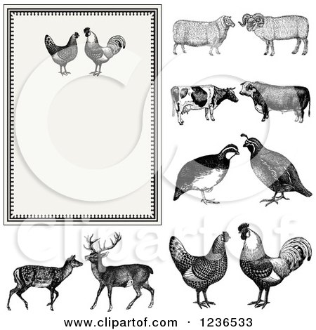 Clipart of a Vintage Invitation with a Rooster Pair on Beige and Other Animals - Royalty Free Vector Illustration by BestVector