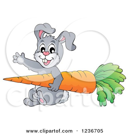 Clipart of a Friendly Gray Bunny Waving and Carrying a Giant Carrot - Royalty Free Vector Illustration by visekart
