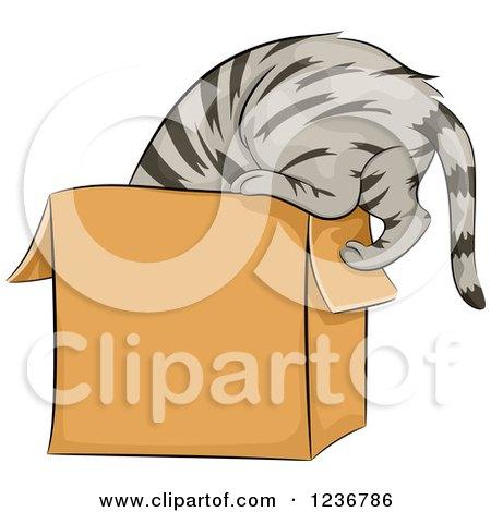 Clipart of a Cu... Curious Cat Clipart