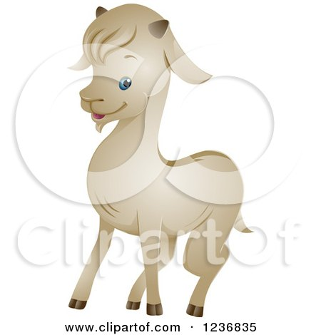 Clipart of a Cute White Goat - Royalty Free Vector Illustration by BNP Design Studio