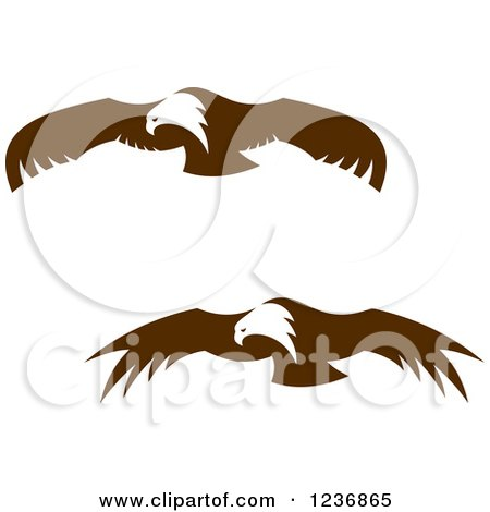 Clipart of Flying Brown Bald Eagles - Royalty Free Vector Illustration by Vector Tradition SM