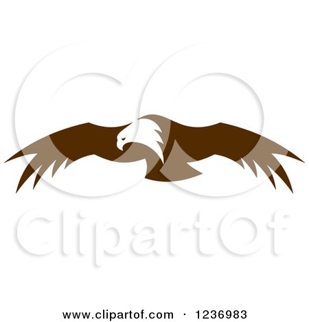 Clipart of a Flying Brown Bald Eagle 2 - Royalty Free Vector Illustration by Vector Tradition SM