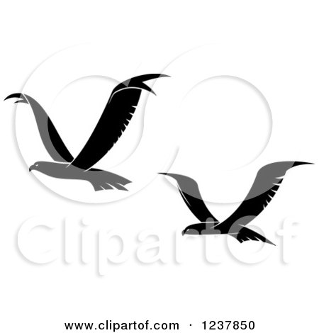 Clipart of Black and White Eagles in Flight - Royalty Free Vector Illustration by Vector Tradition SM