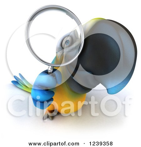 Clipart of a 3d Blue and Yellow Macaw Parrot Looking Through a Magnifying Glass 2 - Royalty Free Illustration by Julos