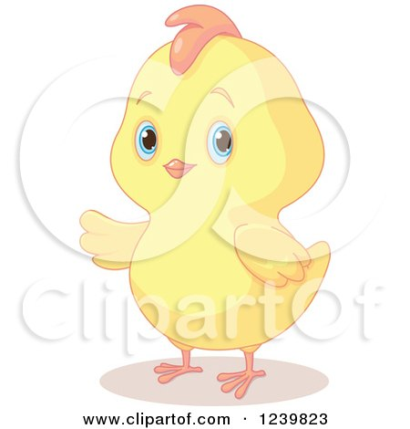 Clipart of a Cute Chubby Easter Chick Presenting - Royalty Free Vector Illustration by Pushkin