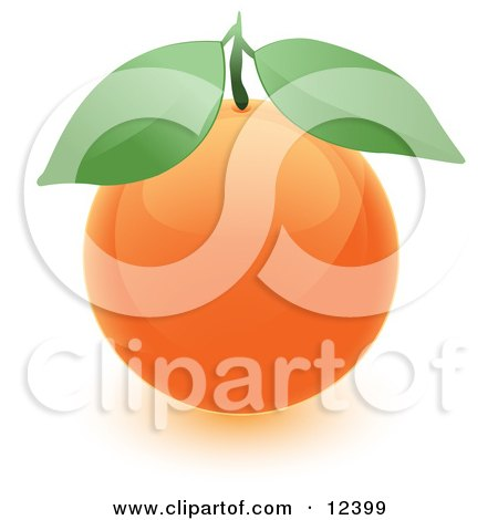Round Orange Fruit With Two Green Leaves Posters, Art Prints