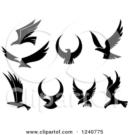 Clipart of Black and White Flying Eagles - Royalty Free Vector Illustration by Vector Tradition SM