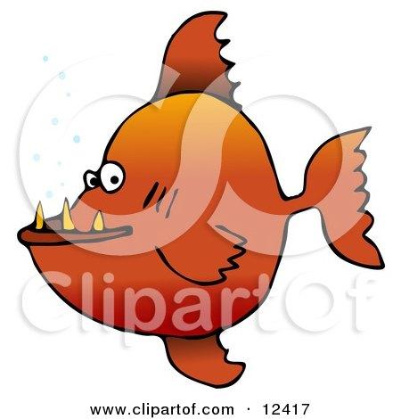 Mean Orange Pacu Pirhanna Fish With Sharp Teeth Animal Clipart Illustration by djart