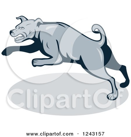 Clipart of a Cartoon Gray Attacking Guard Dog - Royalty Free Vector Illustration by patrimonio