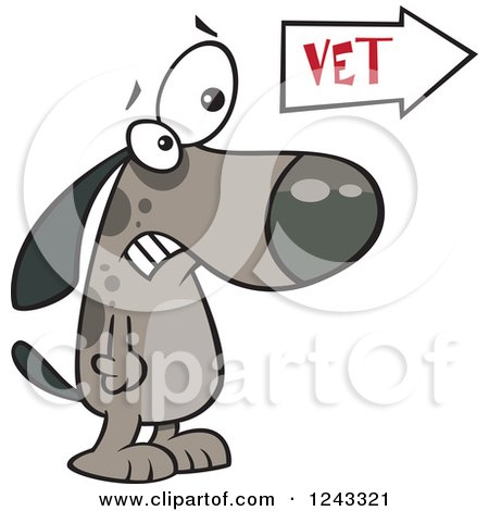 Clipart of a Cartoon Scared Dog at the Vets Office - Royalty Free Vector Illustration by toonaday