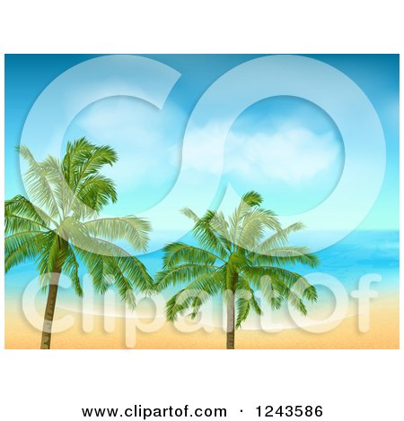 Clipart of a Tropical Beach with White Sand and Palm Trees - Royalty Free Vector Illustration by elaineitalia
