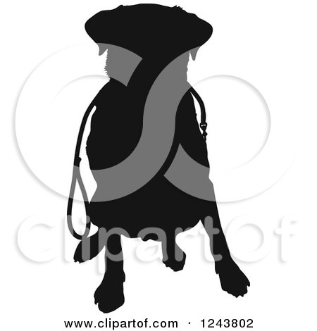 Clipart of a Black Silhouetted Labrador Retriever Dog Sitting with a Leash - Royalty Free Vector Illustration by Maria Bell