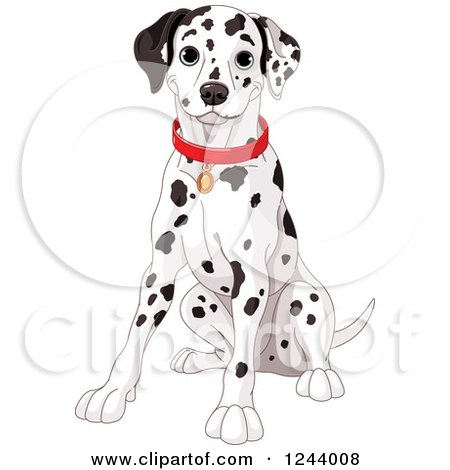 Clipart of a Cute Happy Dalmatian Dog Sitting - Royalty Free Vector Illustration by Pushkin