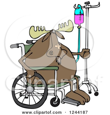 Clipart of an Injured Hospital Patient Moose in a Wheelchair with an Iv - Royalty Free Vector Illustration by djart