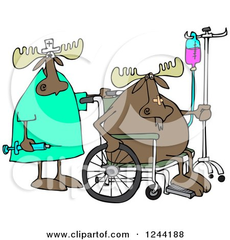 Clipart of a Nurse and Hospital Patient Moose in a Wheelchair with an Iv - Royalty Free Vector Illustration by djart