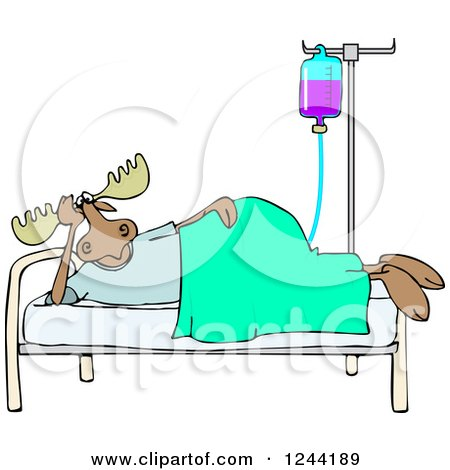 Clipart of a Hospital Patient Moose Resting in a Bed with an Iv - Royalty Free Vector Illustration by djart