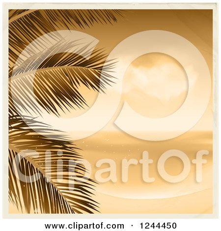 Clipart of a Vintage Sepia Beach with Palm Branches and a Border - Royalty Free Vector Illustration by elaineitalia