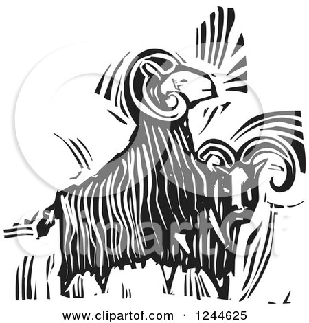 Clipart of Black and White Woodcut Ram Goats - Royalty Free Vector Illustration by xunantunich