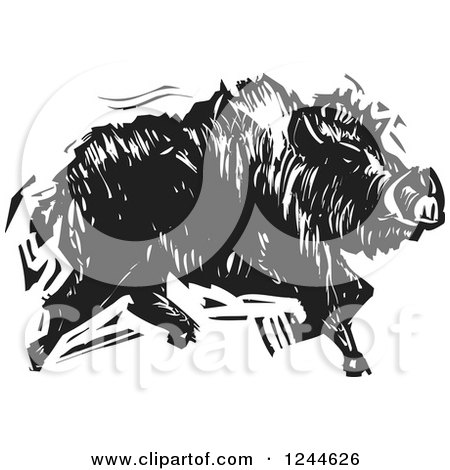 Clipart of a Black and White Woodcut Running Boar - Royalty Free Vector Illustration by xunantunich