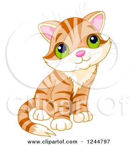 Clipart of a Cute Ginger Tabby Cat Kitten Sitting and Looking up - Royalty Free Vector Illustration by Pushkin