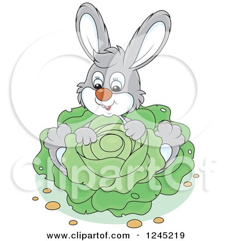 Clipart of a Happy Gray Bunny Rabbit Sitting with Cabbage in a Garden - Royalty Free Vector Illustration by Alex Bannykh