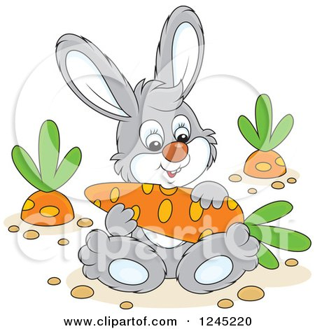 Clipart of a Happy Gray Bunny Rabbit Sitting with a Carrot in a Garden - Royalty Free Vector Illustration by Alex Bannykh