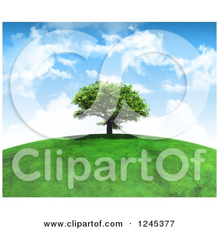 Clipart of a 3d Mature Tree Atop a Grassy Hill Against a Cloudy Sky - Royalty Free Illustration by KJ Pargeter