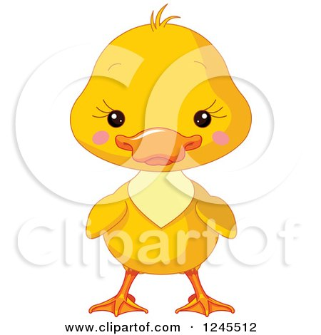 Cute Yellow Baby Duckling Posters, Art Prints