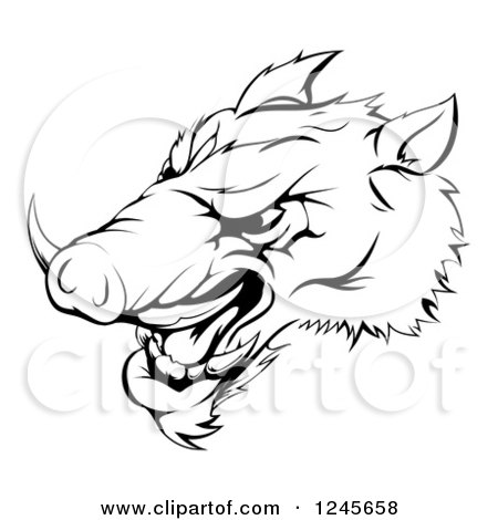 Clipart of a Black and White Aggressive Razorback Boar Sports Mascot - Royalty Free Vector Illustration by AtStockIllustration