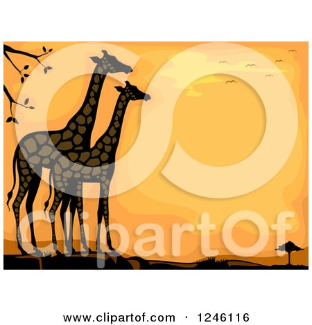 Clipart of Giraffes Against an Orange Sunset - Royalty Free Vector Illustration by BNP Design Studio