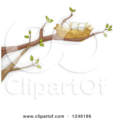 Clipart of a Bird Nest with Eggs on a Tree Branch - Royalty Free Vector Illustration by BNP Design Studio
