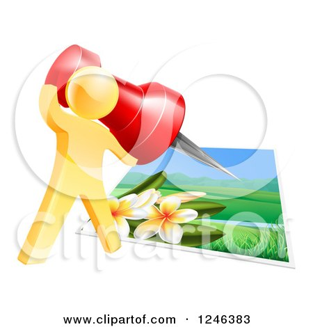 Clipart of a 3d Gold Man Pinning a Photograph - Royalty Free Vector Illustration by AtStockIllustration