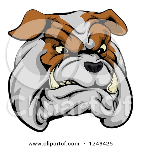 Clipart of a Snarling Aggressive Bulldog Mascot Head - Royalty Free Vector Illustration by AtStockIllustration