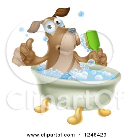 Clipart of a Pleased Brown Dog Bathing and Holding a Thumb up - Royalty Free Vector Illustration by AtStockIllustration