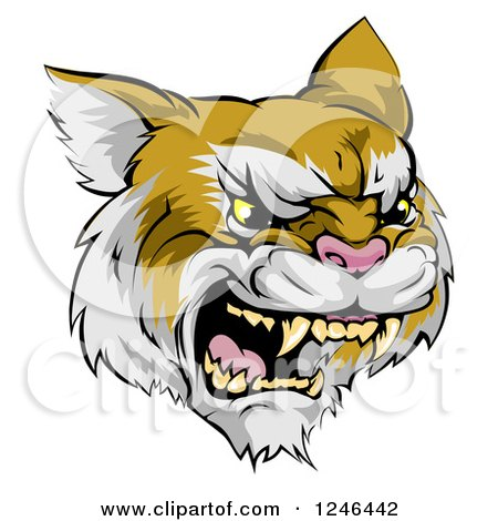 Clipart of a Roaring Aggressive Bobcat Mascot Head - Royalty Free Vector Illustration by AtStockIllustration