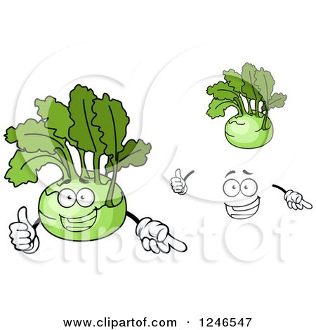 Clipart of Kohlrabi - Royalty Free Vector Illustration by Vector Tradition SM
