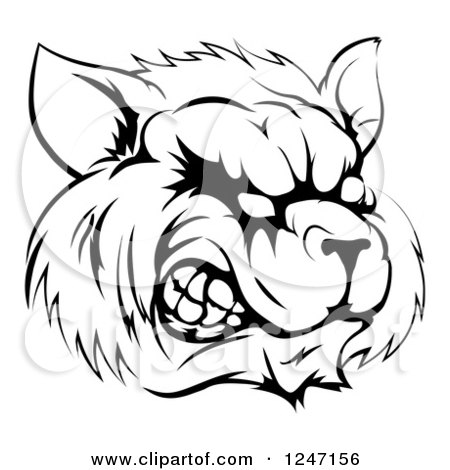 Clipart of a Black and White Snarling Raccoon Mascot Head - Royalty Free Vector Illustration by AtStockIllustration