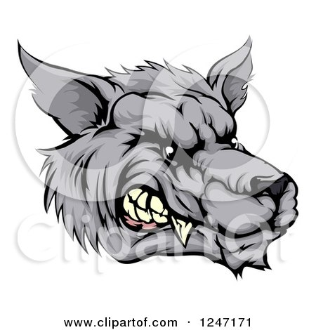 Clipart of a Snarling Vicious Wolf Face - Royalty Free Vector Illustration by AtStockIllustration